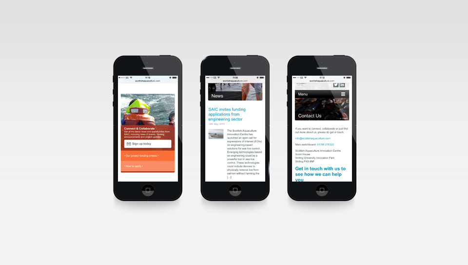 A range of web pages displayed on mobile, showing it is responsive