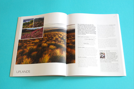 Internal spread designed to balance text and photography