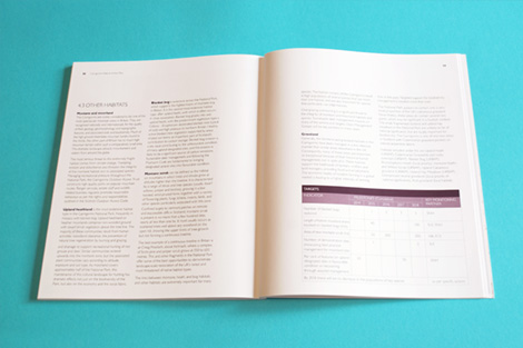 Full text spread with table in Cairngorms brand colours