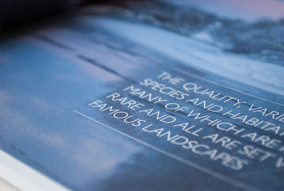 Close up shot of photography and pull quote design treatment