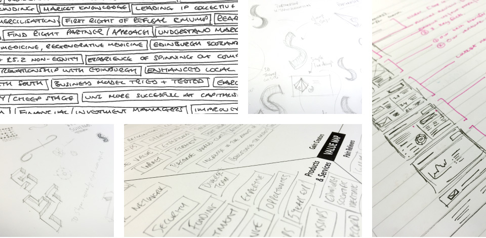 A selection of sketches from the logo and brand development process